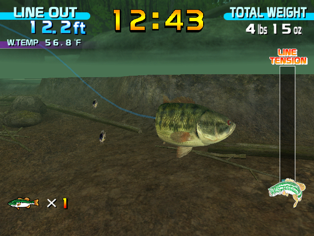 Beautiful fish in the world free fishing games for Fish and game